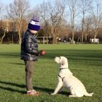 Kiddos & Dogs