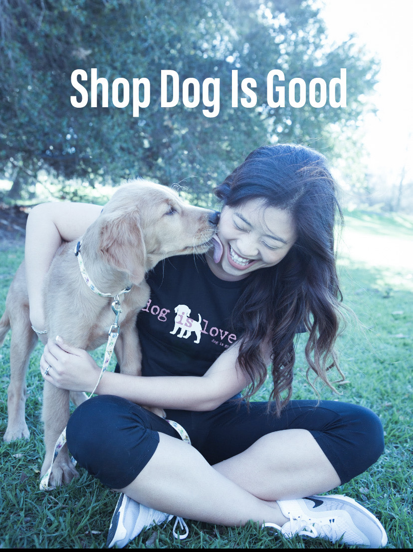 Shop dog is good